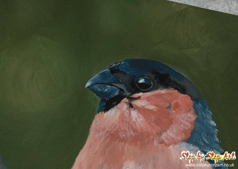 Bullfinch and dark green background created in acrylics on ampersand pastelbord