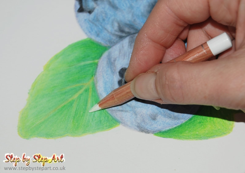Blueberries Tutorial Coloured Pencils Step By Step Art Art Tutorials Articles Product Reviews Art Workshops