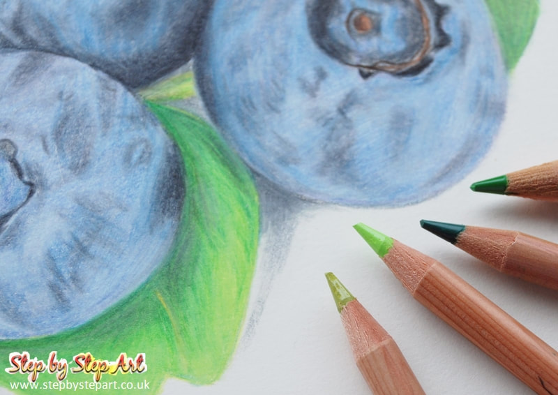 Blueberries coloured pencil drawing completed