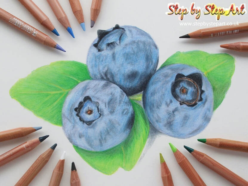 Coloured pencils blueberries tutorial and Caran d'Ache Luminance pencils