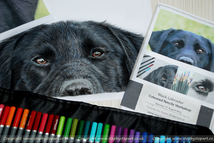 Black Labrador Coloured pencil drawing and Art Workshop booklet for a Coloured pencil Art Workshop in Chesterfield, Derbyshire, UK