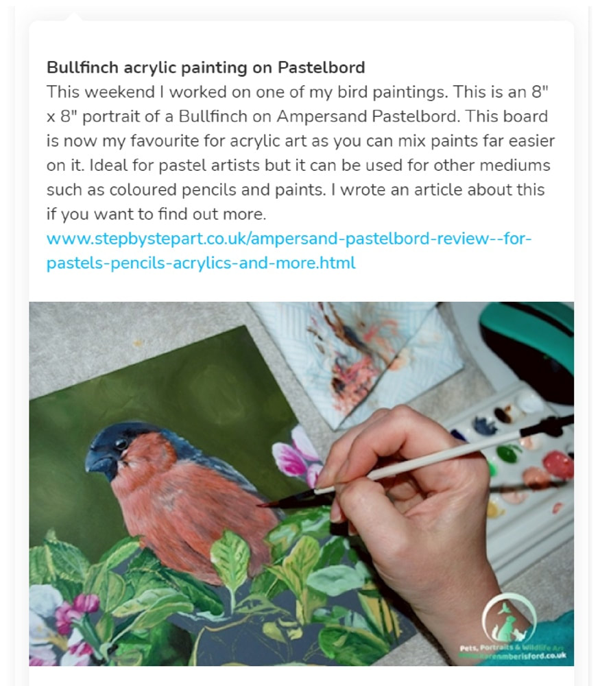 Article about Karen M Berisford painting a bullfinch on Ampersand Pastelbord on the step by step art  ko-fi blog