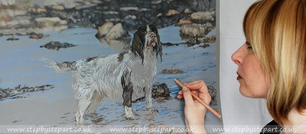 Artist Karen M Berisford working on a Coloured pencil portrait of a springer spaniel in the sea