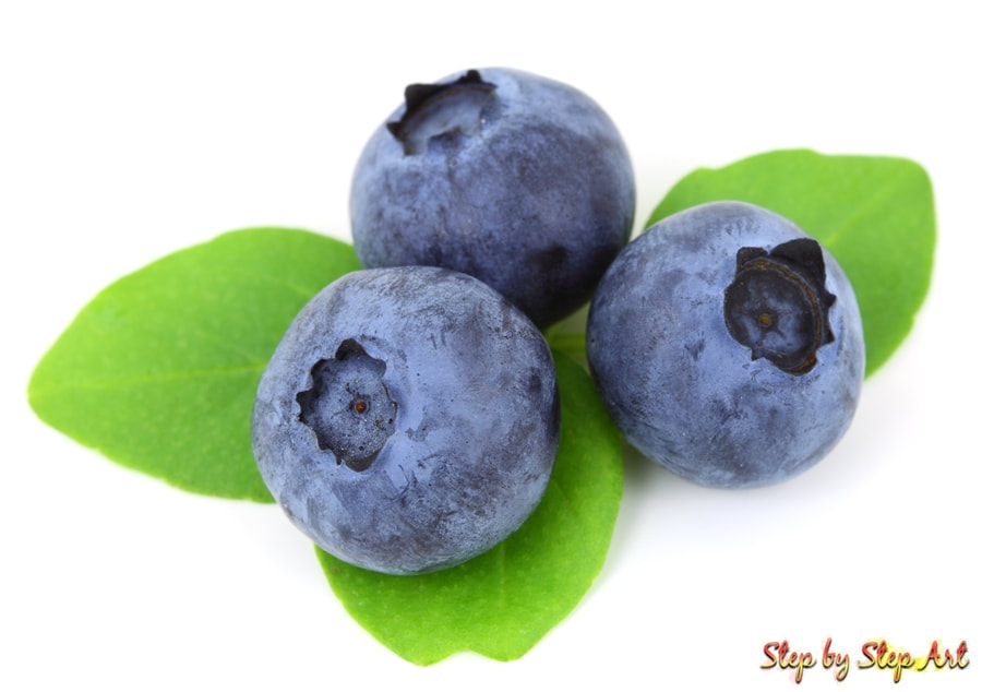 Photograph of Blueberries